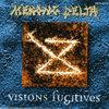 Visionsfugit